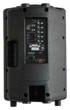 Акустическая система Soundking FP210A