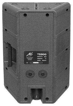 Акустическая система Ms-Max TS300