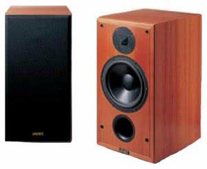 Акустическая система Usher Audio V-9803
