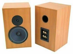 Акустическая система Audio Note AX Two