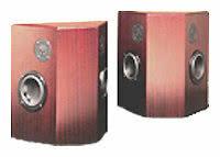 Акустическая система Totem Acoustic Lynks