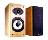Акустическая система Acoustic Energy AE300