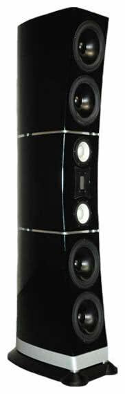 Акустическая система RAIDHO eben X-5