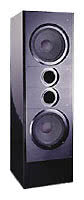 Сабвуфер Wilson Audio XS
